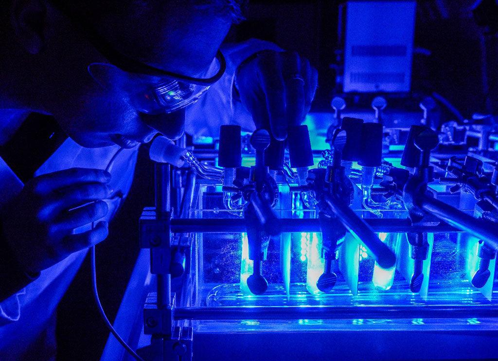 Center for Nanosystems Chemistry